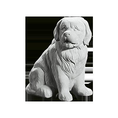 Hund dy972