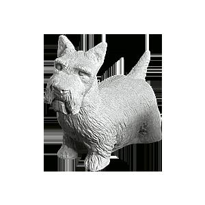 Terrier dy902