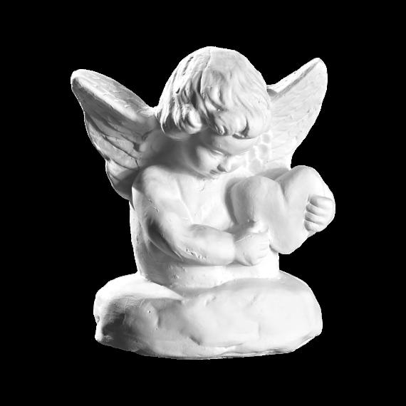 Engel fi2954